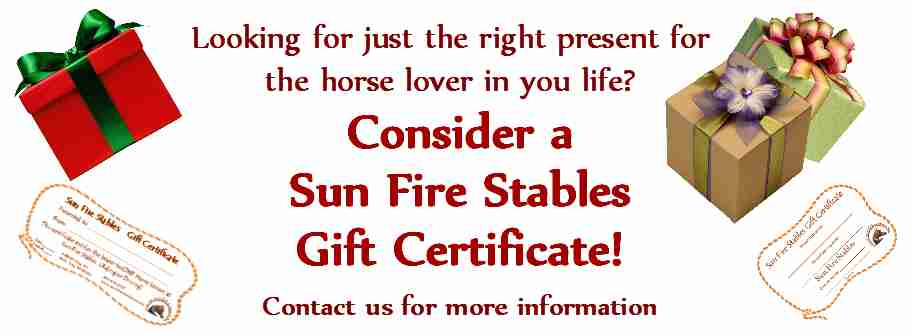 Great Idea for a Gift for your Horse Lovin' Friends & Family!
