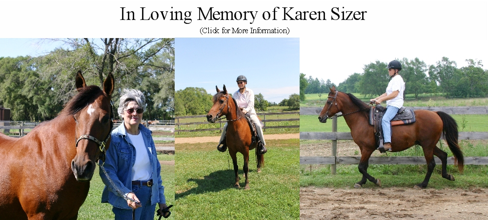 SFS Remembers Karen Sizer